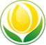 Логотип компании Адонис